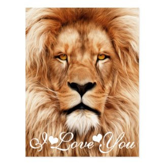 Lion The King Photo Painting I Love You Post Card