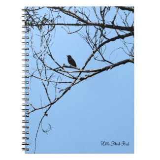 Little Black Bird Notebook
