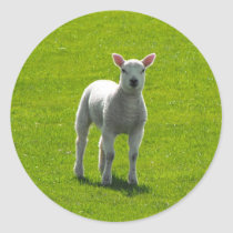 Little Lamb stickers