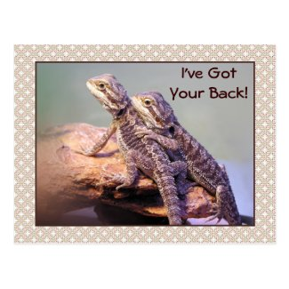 Lizard Friendship Photo Post Cards