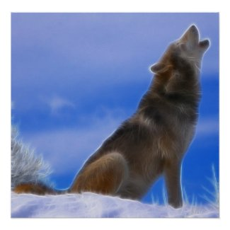 Lonely Howling Endangered Gray Wolf Print