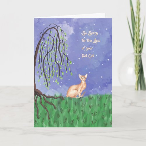 Loss of Pet Cat (Abyssinian) Sympathy Card