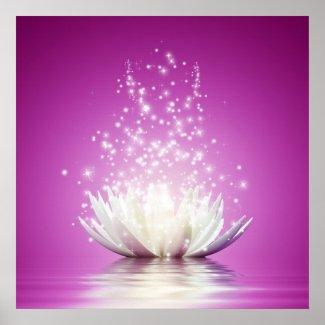 Lotus chakra love healing healer yoga zen energy