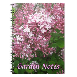 Lovely Lilac Note Books