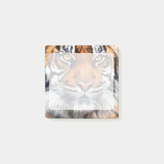 Male Siberian Tiger Photograph Post-it Notes