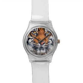 Male Siberian Tiger Watch