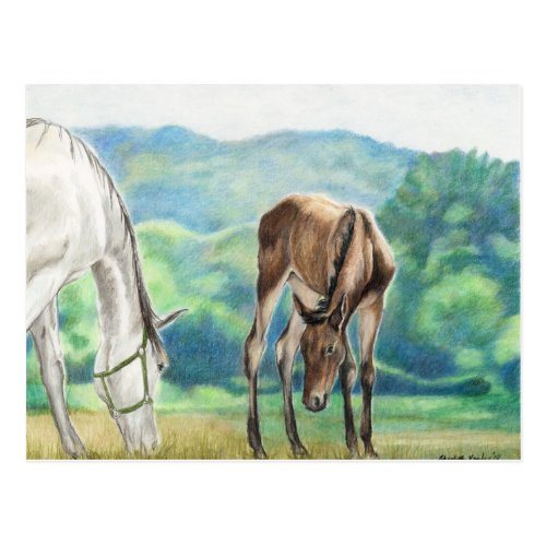 Mare & Foal Original Art Post Card