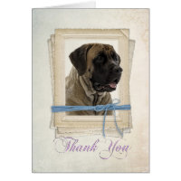 Mastiff Thank You Card