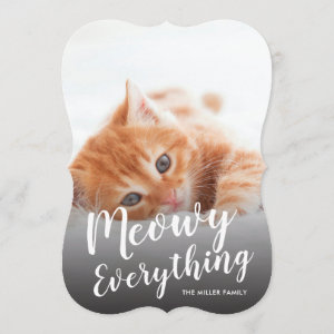 Meowy Everything Cat Holiday Photo Card