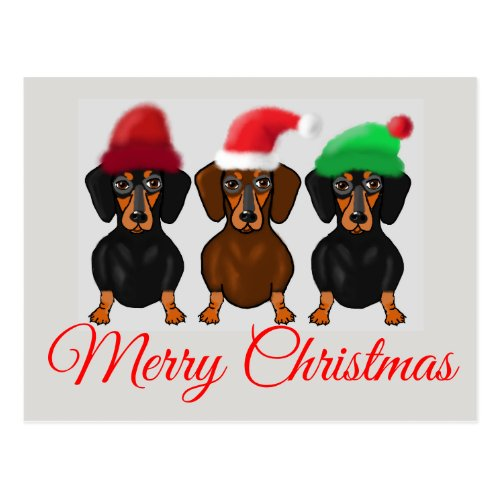 Merry Christmas Dachshund Postcard