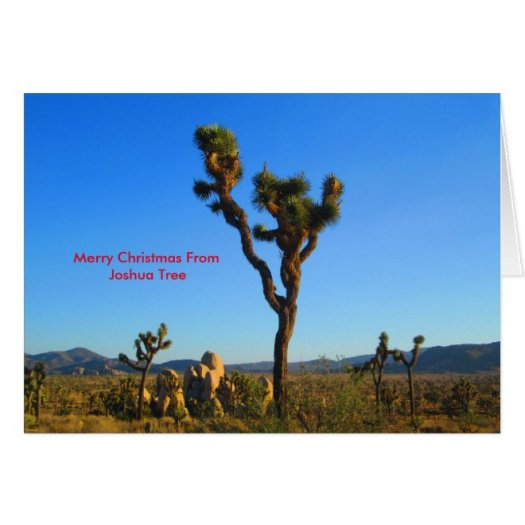 Merry Christmas From Joshua Tree Greeting Card
