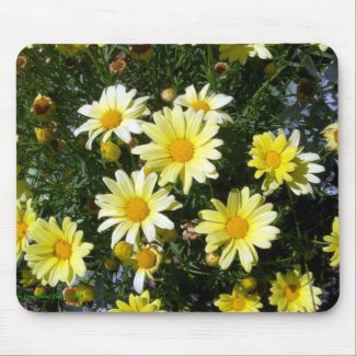 Misty (Agryranthemum) Mouse Pads