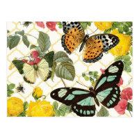 modern vintage butterfly garden postcard
