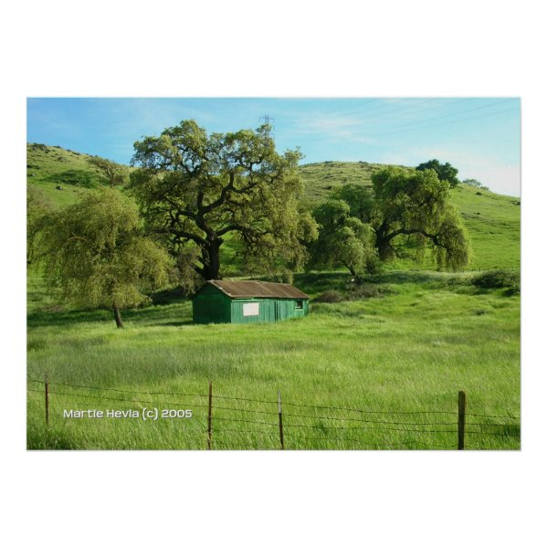 Morgan Hill Meadow Print