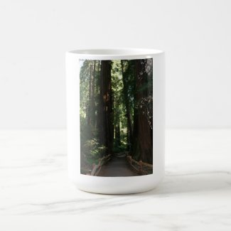 Muir Woods National Monument 15 Oz Stainless Steel Travel Mug