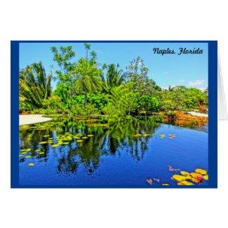 Naples Florida Botanical Garden - Infinity Pool