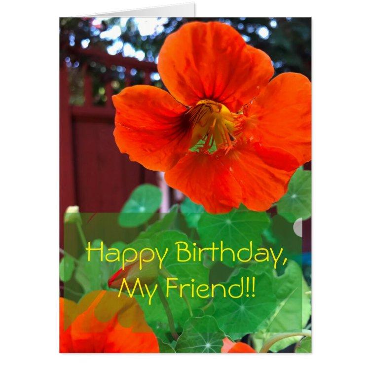 Nasturtium Birthday Giant Card