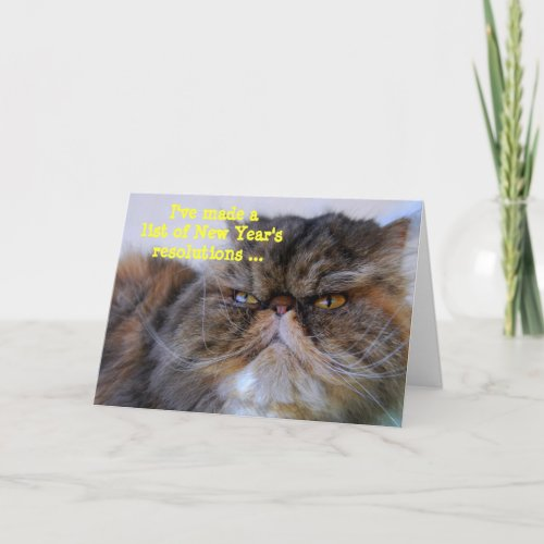 New Year's Resolutions Calico Persian Kitty Card card