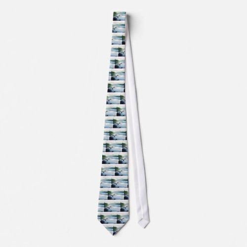 Oakridge Reservoir #2 tie