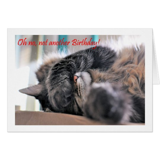 Oh No Not Another Birthday Cat Happy Birthday Card