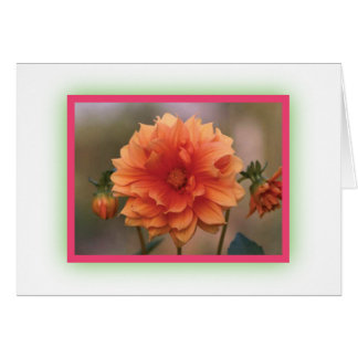 Orange Dahlia Greeting Card