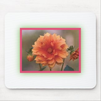 Orange Dahlia Mouse Pads