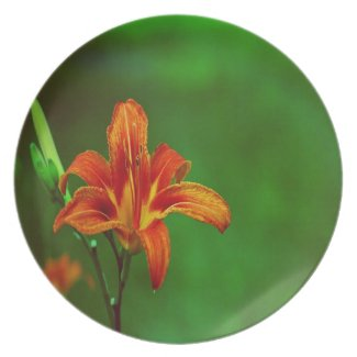 Orange Flower Lily Party Plate