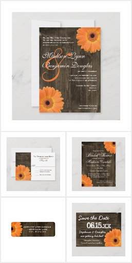 Bright Gerber Daisy Wedding Invitations