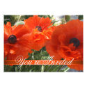 Orange Poppies Garden Party Invitation