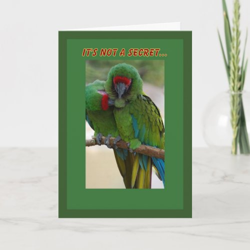 Parrot Couple Birthday Card card