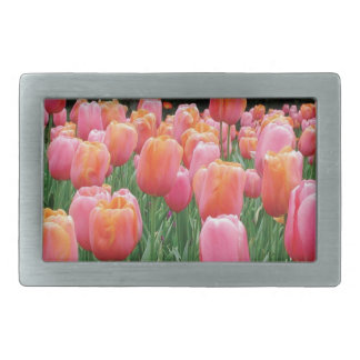 Peach and Pink Tulips Belt Buckle