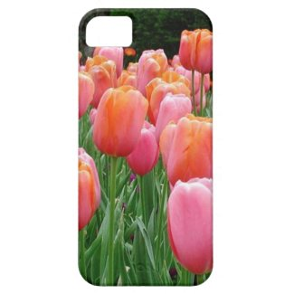 Peach and Pink Tulips iPhone 5 Covers