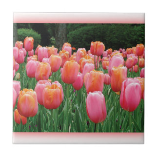 Peach and Pink Tulips Tiles