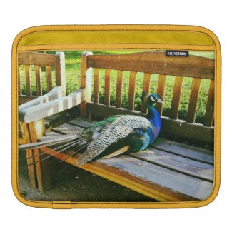 Peacock on the bench sleeve for iPads