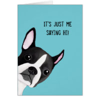 Peeking Boston Terrier Illustrated Greeting Card