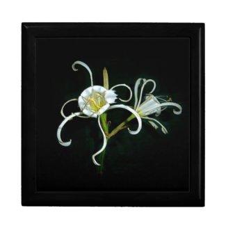 Peruvian Daffodils Jewelry Boxes