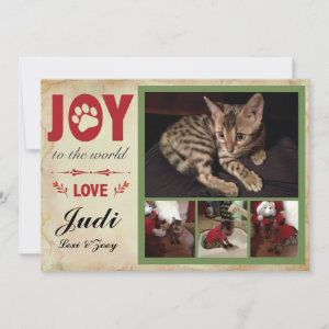 Pet Holiday Card - Christmas Stripes