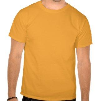 PI-GER TIGER STRIPED SEXY PI! 3.14 shirt