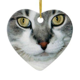 Pickle the Cat Ornament ornament