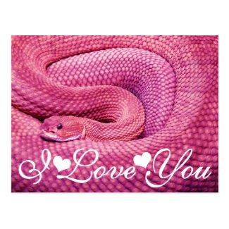 Pink Basilisk Rattlesnake I Love You Postcard