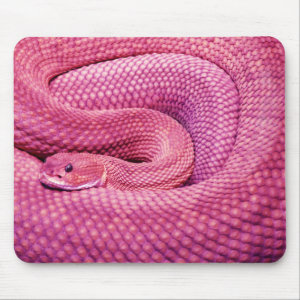 Pink Basilisk Rattlesnake Mouse Pad