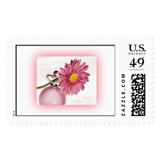 Pink Gerbera Daisy Postage Stamp