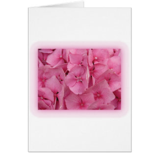 Pink Hydrangea Greeting Cards