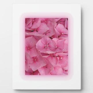 Pink Hydrangea Photo Plaques