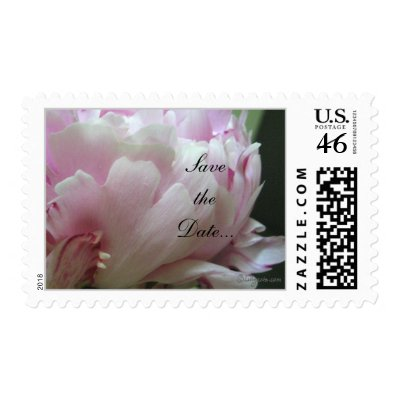 Personalisable peony stamps from Zazzle