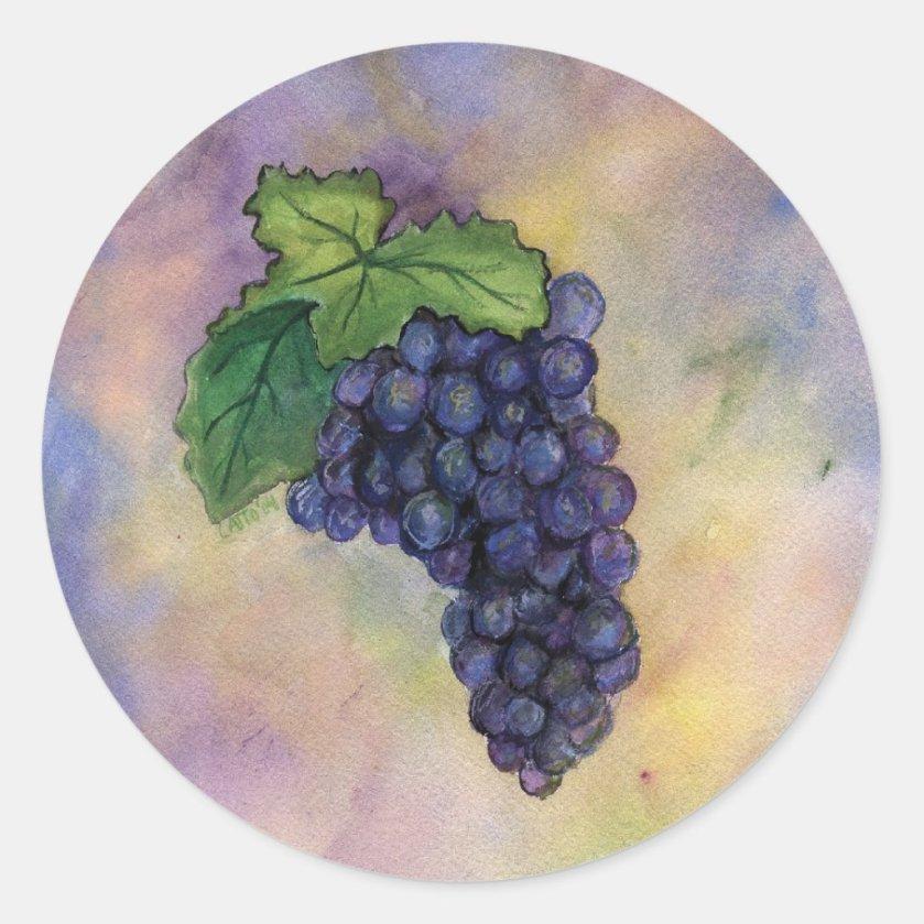 Pinot Noir Wine Grapes Sticker