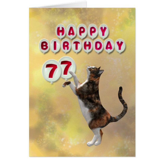 Playful Cat And 77th Happy Birthday Balloons Card Zazzle
