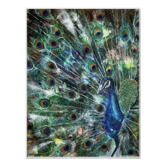 PMACarlson Jewelled Poster print