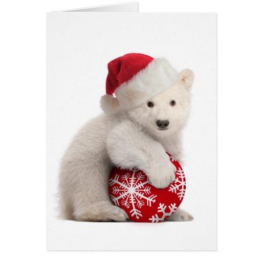 Polar Bear Christmas Cards Polar Bear Christmas Card