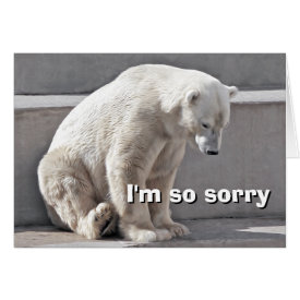 Polar Bear I'm So Sorry Card
